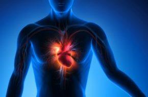 Testosteronsubstitution: Testosteronmangel und kardiovaskuläre Risiken